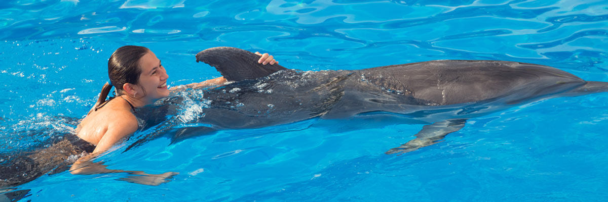 swimming-with-dolphins-in-the-bahamas