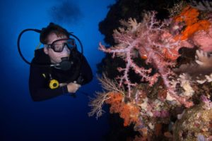 Scuba diver fully dressed in dive gear swimming along colorful fish and pink and orange coral reef deep beneath the ocean